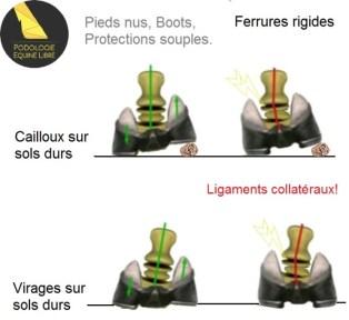 hoof-flex-comparison-graphics (1)